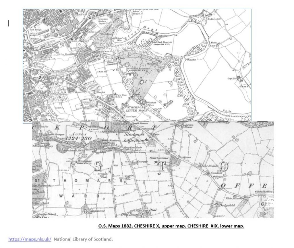 1882 OS Map of Cheshire showing the Woodbank area